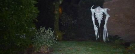 Halloween 2011, scarecrow